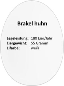 eierdetails-brakel