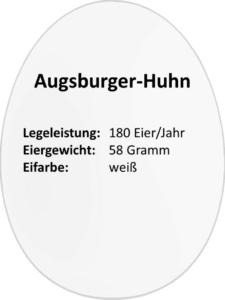 eierdetails_augsburger_huhn