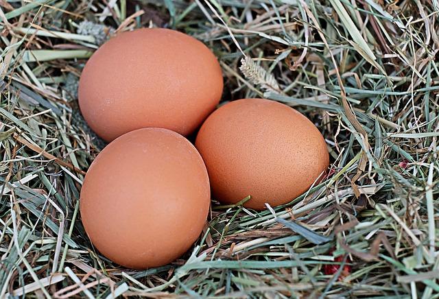 Jeden Tag ein eignes leckeres Ei zum Frühstück.