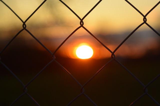 Ein Zaun aus gepflecht bildet dauerhat einen guten Freilauf für Ihre Hühner.