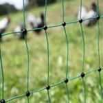 Hühnerzaun aus Netzgewebe im Vergleich